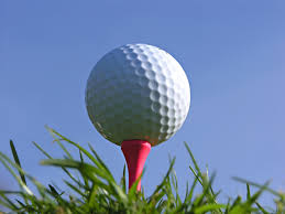 20th Annual Allegan Area Chamber of Commerce Golf Classic planned for June 26