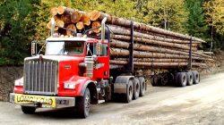D & C Trucking Inc.